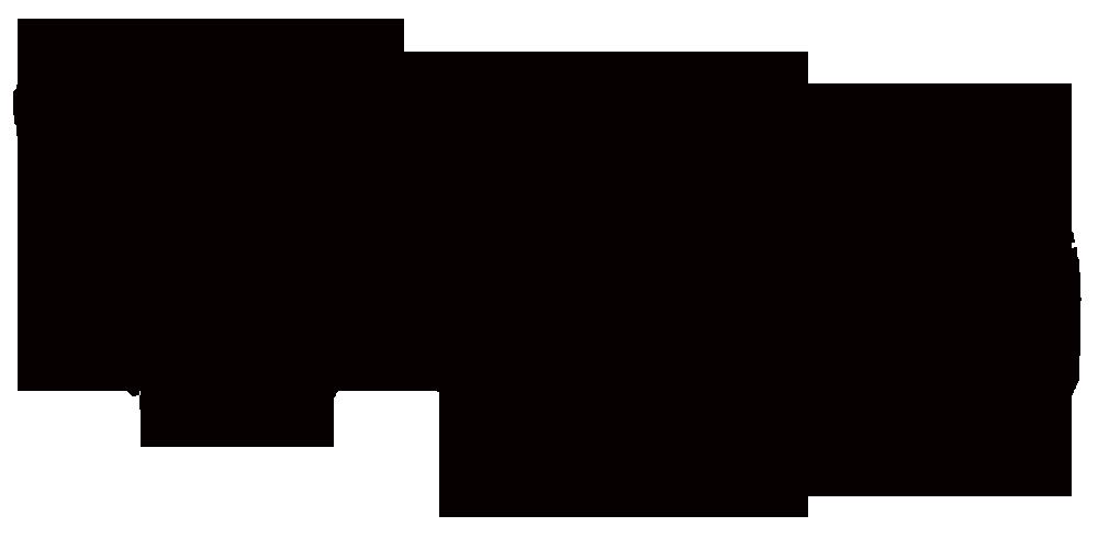 logo-for-bosite2